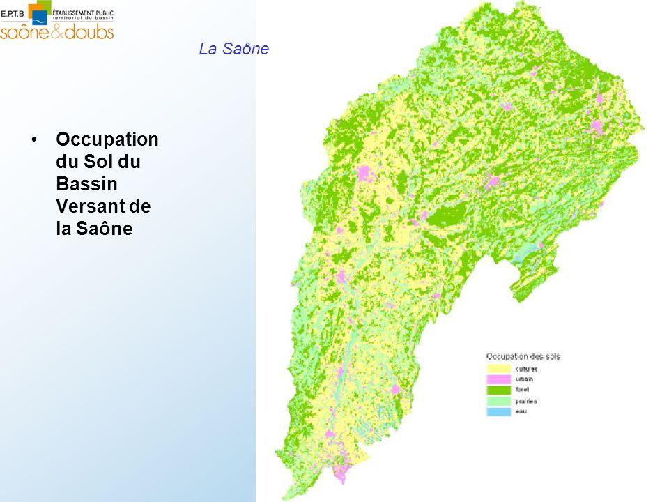Occupation du Sol du Bassin Versant de la Saône La Saône