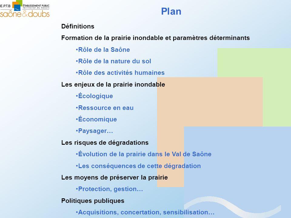 Plan Définitions Formation de la prairie inondable et paramètres déterminants Rôle de la Saône Rôle de la nature du sol Rôle des activités humaines Le