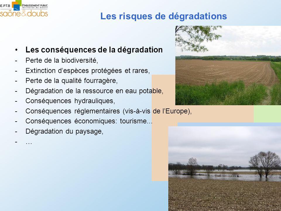 Les risques de dégradations Les conséquences de la dégradation -Perte de la biodiversité, -Extinction despèces protégées et rares, -Perte de la qualité fourragère, -Dégradation de la ressource en eau potable, -Conséquences hydrauliques, -Conséquences réglementaires (vis-à-vis de lEurope), -Conséquences économiques: tourisme...