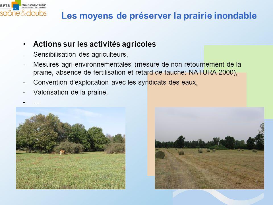 Actions sur les activités agricoles -Sensibilisation des agriculteurs, -Mesures agri-environnementales (mesure de non retournement de la prairie, absence de fertilisation et retard de fauche: NATURA 2000), -Convention dexploitation avec les syndicats des eaux, -Valorisation de la prairie, -…