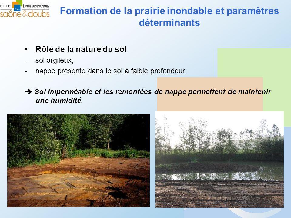 Rôle de la nature du sol -sol argileux, -nappe présente dans le sol à faible profondeur. Sol imperméable et les remontées de nappe permettent de maint