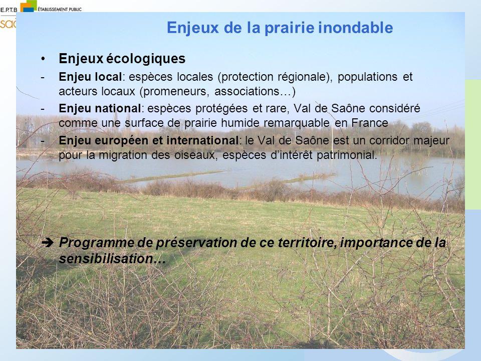Enjeux écologiques -Enjeu local: espèces locales (protection régionale), populations et acteurs locaux (promeneurs, associations…) -Enjeu national: es