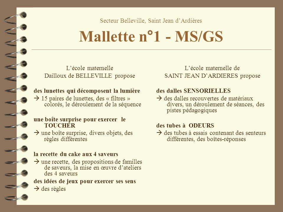 Secteur Belleville, Saint Jean dArdières Mallette n°1 - MS/GS Lécole maternelle Dailloux de BELLEVILLE propose des lunettes qui décomposent la lumière