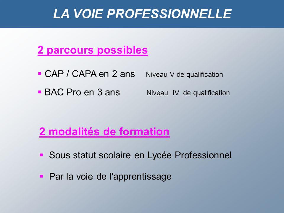 2 parcours possibles CAP / CAPA en 2 ans Niveau V de qualification BAC Pro en 3 ans Niveau IV de qualification 2 modalités de formation Sous statut scolaire en Lycée Professionnel Par la voie de l apprentissage LA VOIE PROFESSIONNELLE
