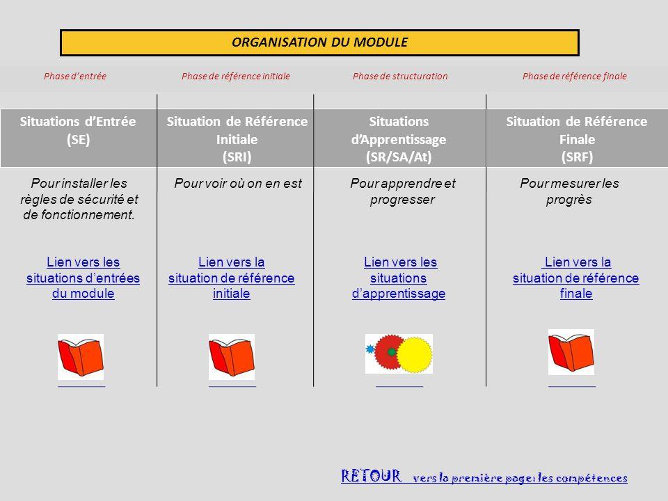 ORGANISATION DU MODULE Phase dentrée Phase de référence initiale Phase de structuration Phase de référence finale Situations dEntrée (SE) Situation de