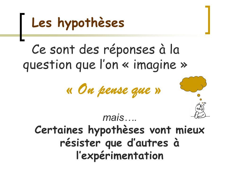 Les hypothèses « On pense que » Ce sont des réponses à la question que lon « imagine » mais…. Certaines hypothèses vont mieux résister que dautres à l