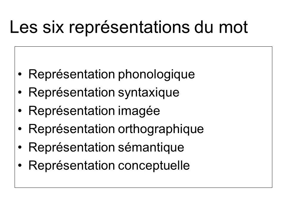 Les six représentations du mot Représentation phonologique Représentation syntaxique Représentation imagée Représentation orthographique Représentatio