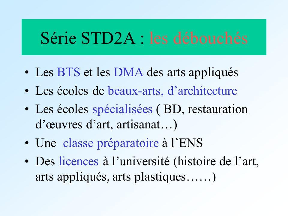 Série STD2A : les débouchés Les BTS et les DMA des arts appliqués Les écoles de beaux-arts, darchitecture Les écoles spécialisées ( BD, restauration d