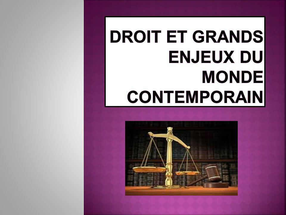 Initiation au droit Comment les grands enjeux du monde contemporain sont saisis par le droit.