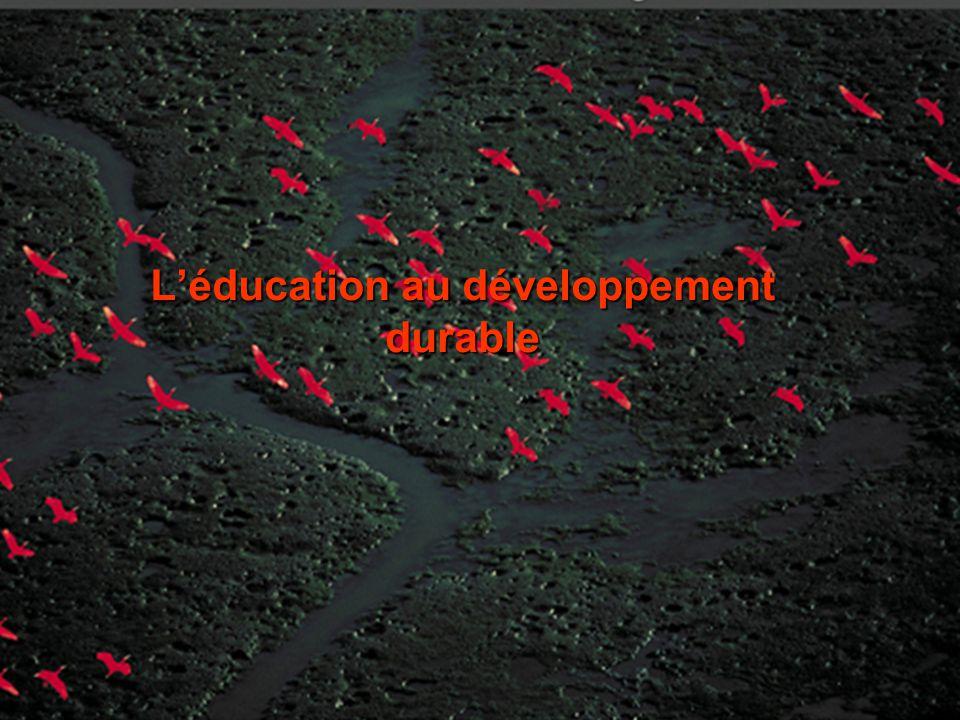 30/05/2014Groupe départemental EDD du Rhône Léducation au développement durable