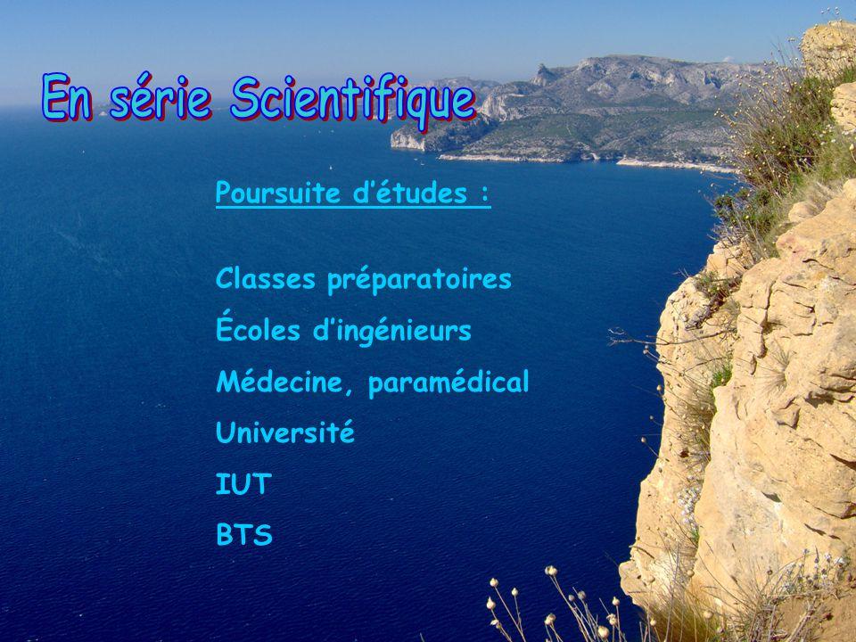 Poursuite détudes : Classes préparatoires Écoles dingénieurs Médecine, paramédical Université IUT BTS