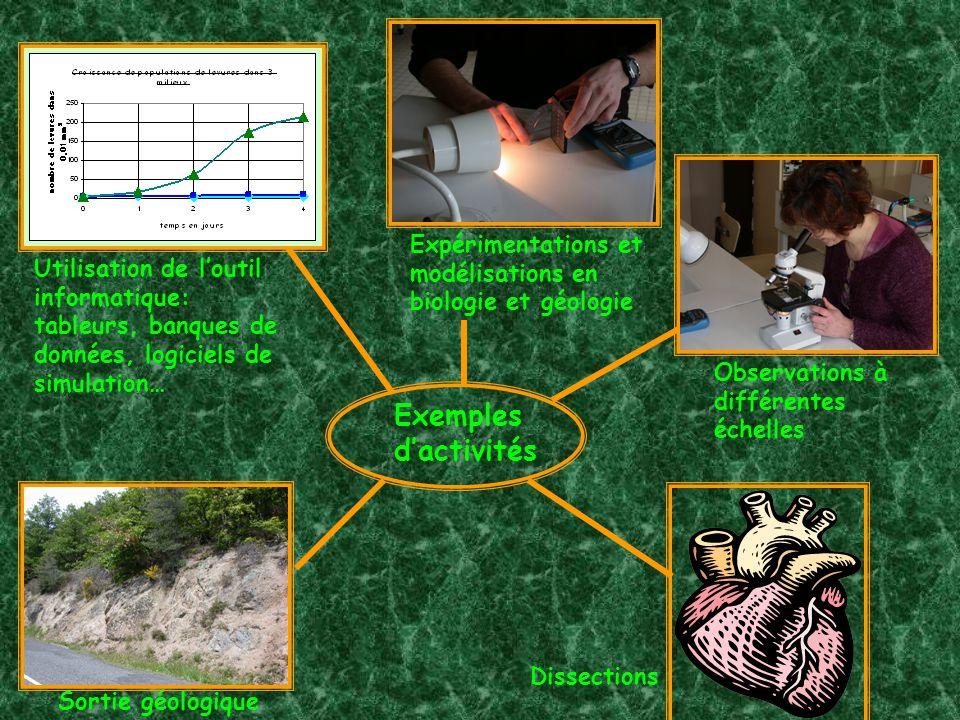 Utilisation de loutil informatique: tableurs, banques de données, logiciels de simulation… Observations à différentes échelles Expérimentations et modélisations en biologie et géologie Sortie géologique Exemples dactivités Dissections