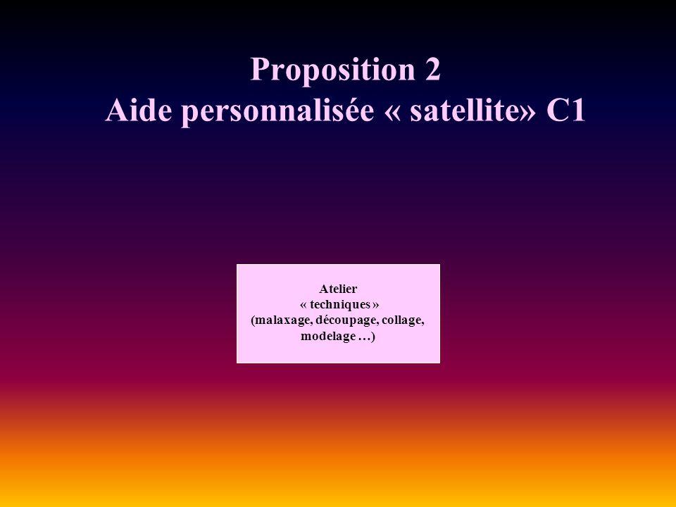Proposition 2 Aide personnalisée « satellite» C1 Atelier « techniques » (malaxage, découpage, collage, modelage …)