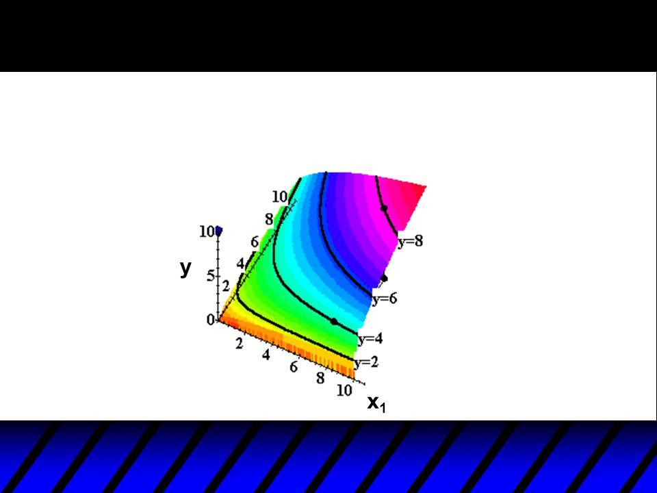x1x1 y