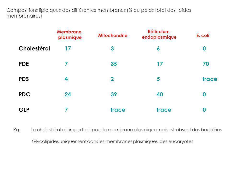 Compositions lipidiques des différentes membranes (% du poids total des lipides membranaires) Cholestérol17360 PDE7351770 PDS425trace PDC2439400 GLP7t