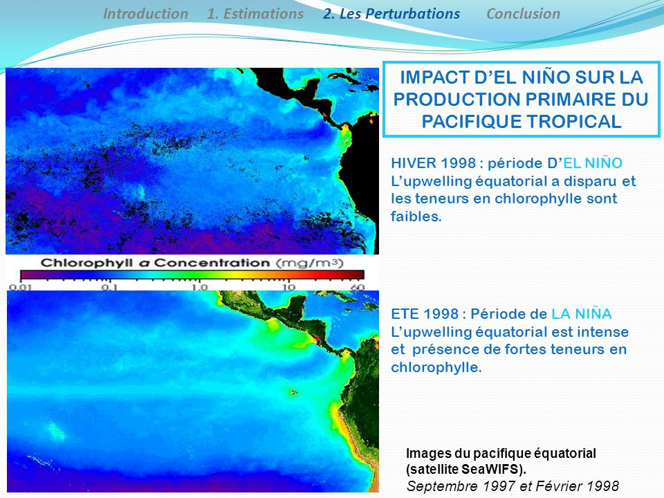 ETE 1998 : Période de LA NIÑA Lupwelling équatorial est intense et présence de fortes teneurs en chlorophylle. HIVER 1998 : période DEL NIÑO Lupwellin