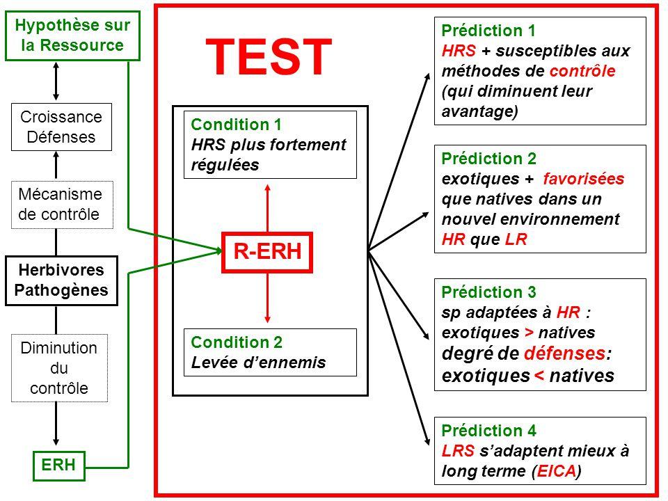 Herbivores Pathogènes Hypothèse sur la Ressource ERH Prédiction 4 LRS sadaptent mieux à long terme (EICA) Croissance Défenses Diminution du contrôle Mécanisme de contrôle R-ERH Condition 1 HRS plus fortement régulées Condition 2 Levée dennemis TEST Prédiction 1 HRS + susceptibles aux méthodes de contrôle (qui diminuent leur avantage) Prédiction 3 sp adaptées à HR : exotiques > natives degré de défenses: exotiques < natives Prédiction 2 exotiques + favorisées que natives dans un nouvel environnement HR que LR