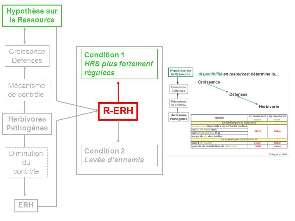R-ERH Condition 1 HRS plus fortement régulées Herbivores Pathogènes Hypothèse sur la Ressource ERH Croissance Défenses Diminution du contrôle Mécanisme de contrôle Condition 2 Levée dennemis