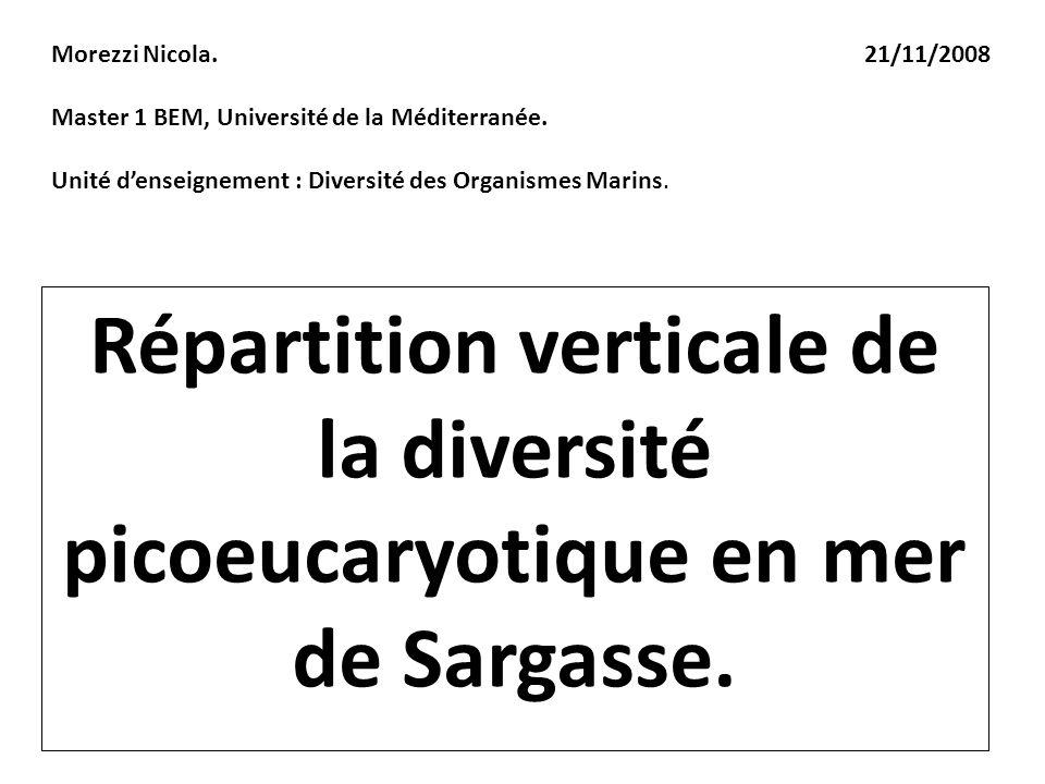 Répartition verticale de la diversité picoeucaryotique en mer de Sargasse. Morezzi Nicola. 21/11/2008 Master 1 BEM, Université de la Méditerranée. Uni
