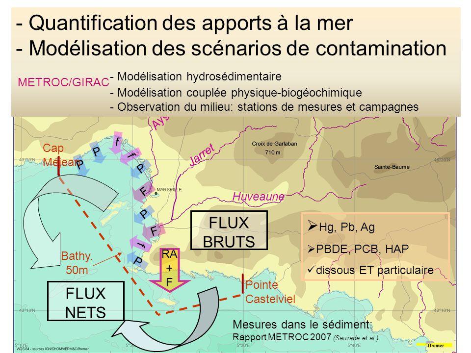 Modélisation des contaminants chimiques Le modèle permet de considérer des processus de dégradation transformation volatilisation adsorption/désorption des contaminants chimiques.
