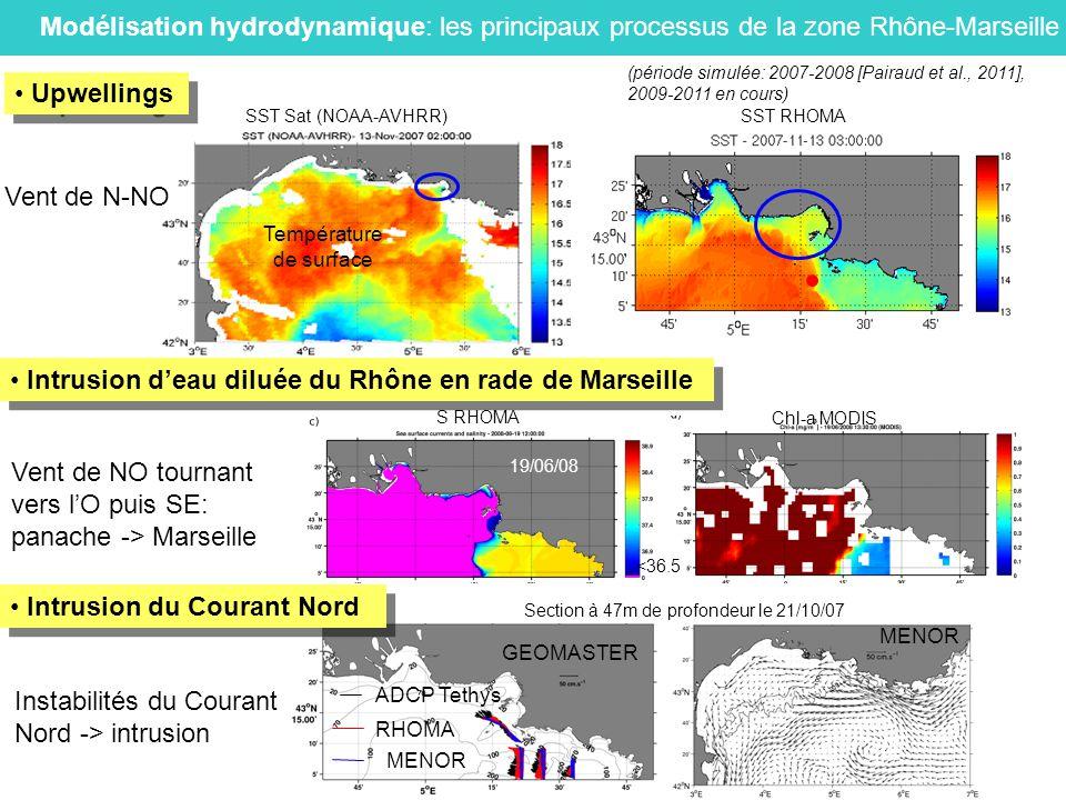 Modélisation hydrodynamique: les principaux processus de la zone Rhône-Marseille Température de surface SST Sat (NOAA-AVHRR) SST RHOMA Vent de N-NO Up
