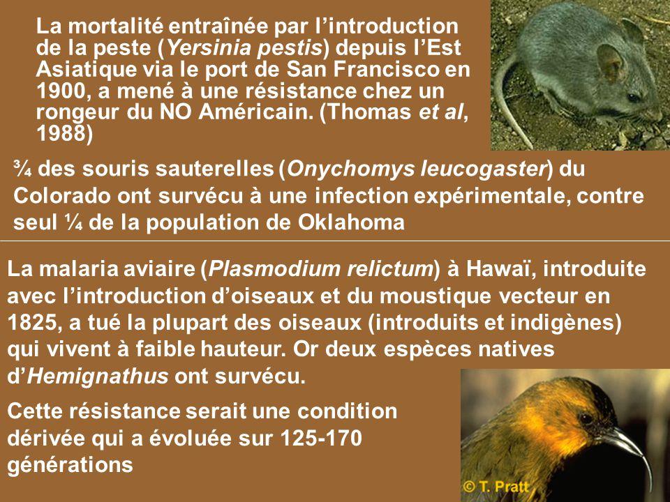 ¾ des souris sauterelles (Onychomys leucogaster) du Colorado ont survécu à une infection expérimentale, contre seul ¼ de la population de Oklahoma La