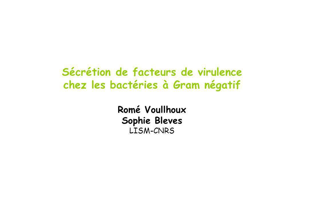 Sécrétion de facteurs de virulence chez les bactéries à Gram négatif Romé Voullhoux Sophie Bleves LISM-CNRS