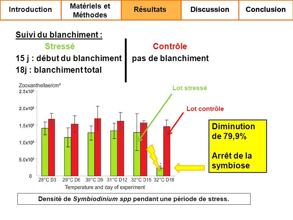 Suivi du blanchiment : Stressé Contrôle 15 j : début du blanchiment pas de blanchiment 18j : blanchiment total Densité de Symbiodinium spp pendant une période de stress.
