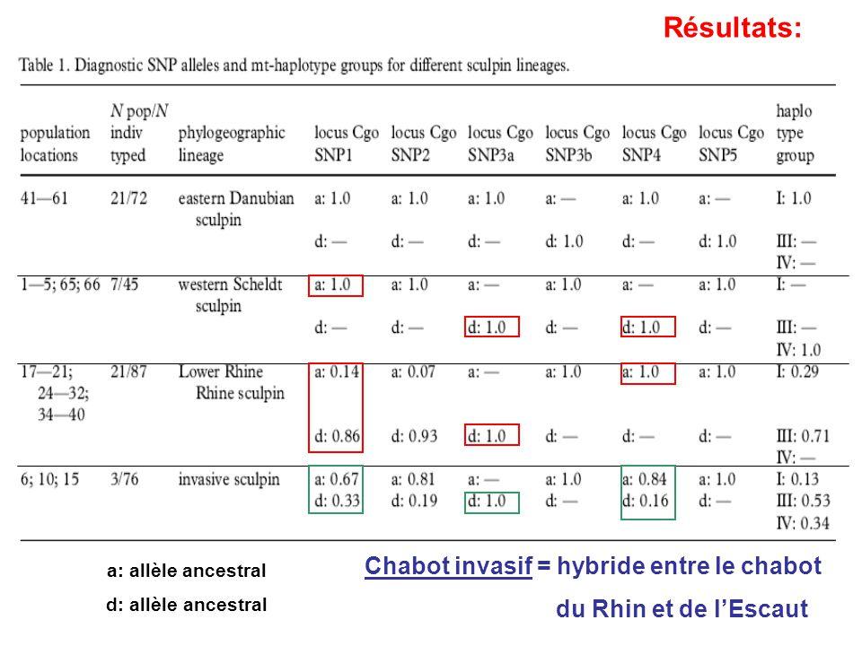 Résultats: a: allèle ancestral d: allèle ancestral Chabot invasif = hybride entre le chabot du Rhin et de lEscaut