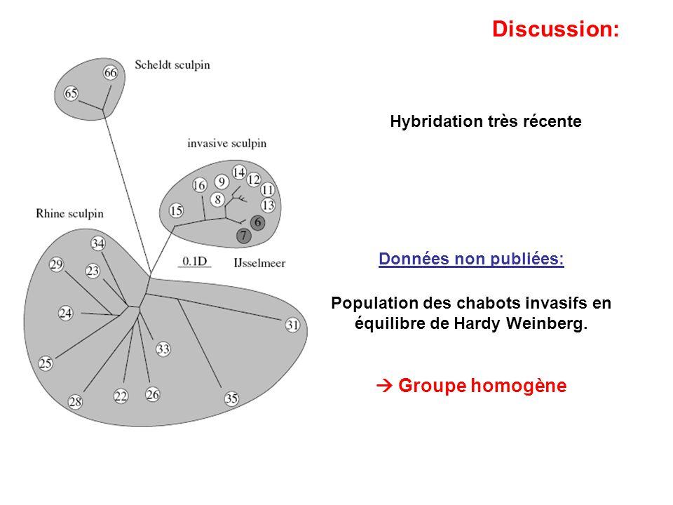 Hybridation très récente Données non publiées: Population des chabots invasifs en équilibre de Hardy Weinberg. Groupe homogène Discussion: