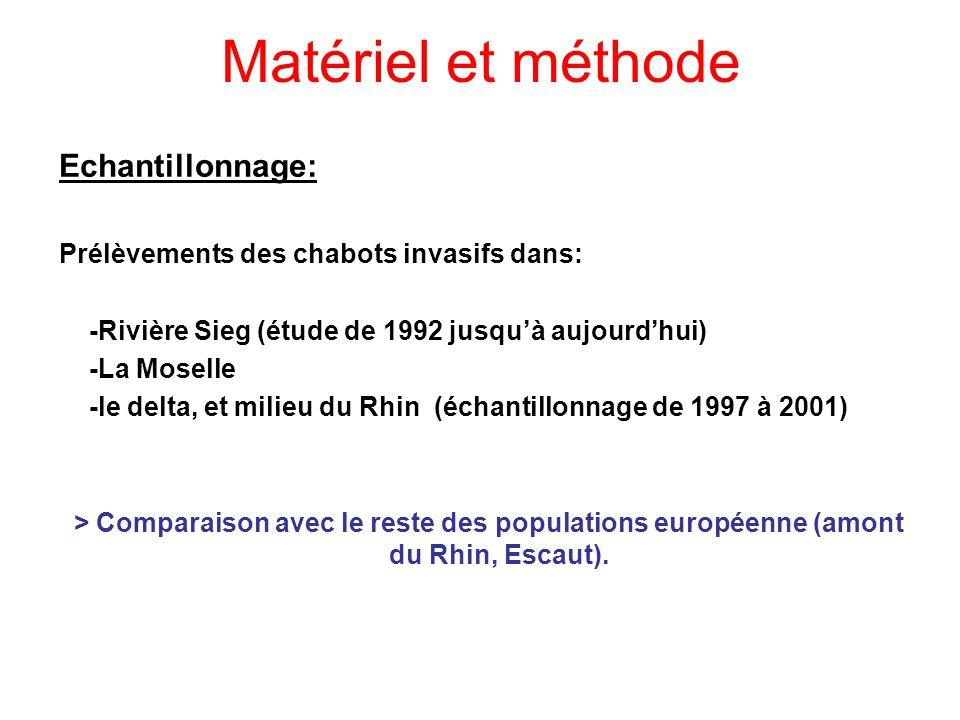 Matériel et méthode Echantillonnage: Prélèvements des chabots invasifs dans: -Rivière Sieg (étude de 1992 jusquà aujourdhui) -La Moselle -le delta, et