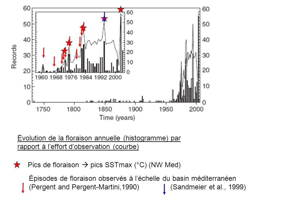 Évolution de la floraison annuelle (histogramme) par rapport à leffort dobservation (courbe) Pics de floraison pics SSTmax (°C) (NW Med) Épisodes de f