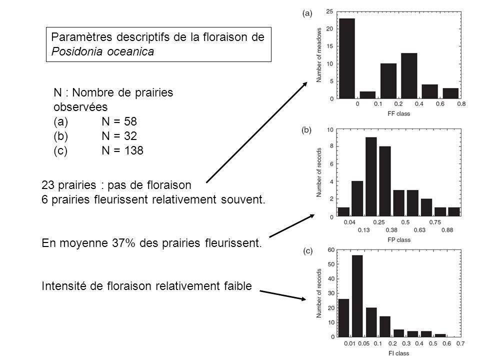 Paramètres descriptifs de la floraison de Posidonia oceanica N : Nombre de prairies observées (a)N = 58 (b)N = 32 (c)N = 138 23 prairies : pas de flor