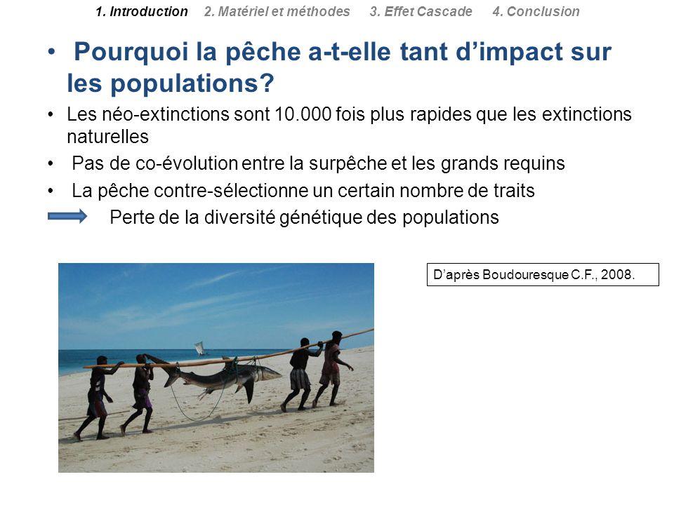 Daprès Boudouresque C.F., 2008. Pourquoi la pêche a-t-elle tant dimpact sur les populations? Les néo-extinctions sont 10.000 fois plus rapides que les