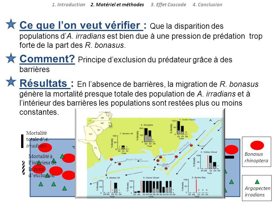 Ce que lon veut vérifier : Que la disparition des populations dA. irradians est bien due à une pression de prédation trop forte de la part des R. bona
