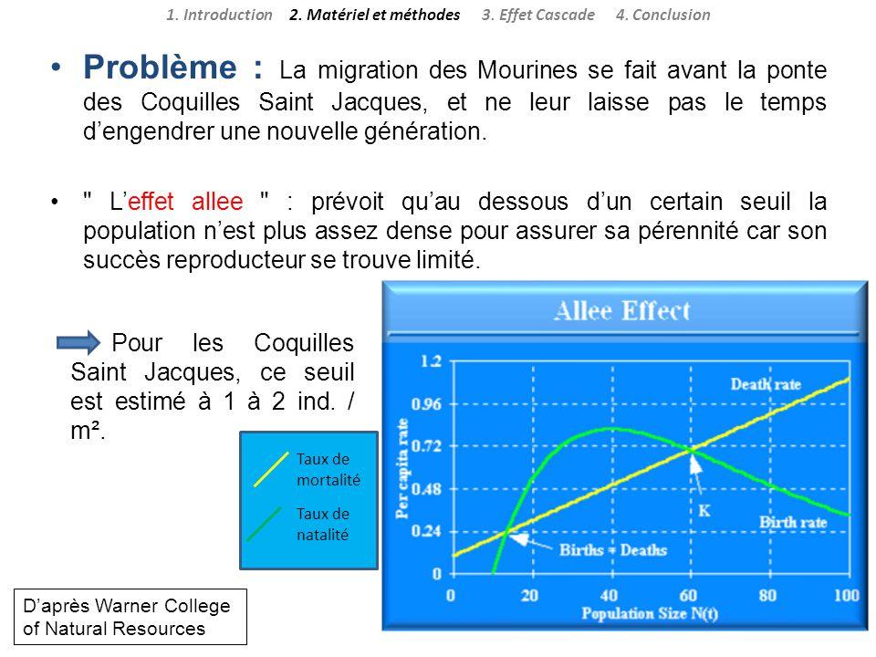 Problème : La migration des Mourines se fait avant la ponte des Coquilles Saint Jacques, et ne leur laisse pas le temps dengendrer une nouvelle généra