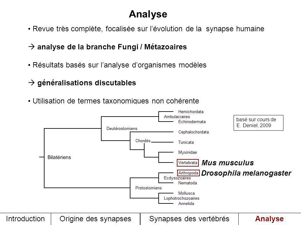Analyse Revue très complète, focalisée sur lévolution de la synapse humaine analyse de la branche Fungi / Métazoaires Résultats basés sur lanalyse dor