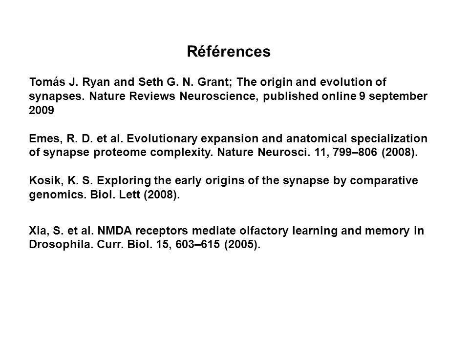 Références Tomás J. Ryan and Seth G. N. Grant; The origin and evolution of synapses. Nature Reviews Neuroscience, published online 9 september 2009 Em