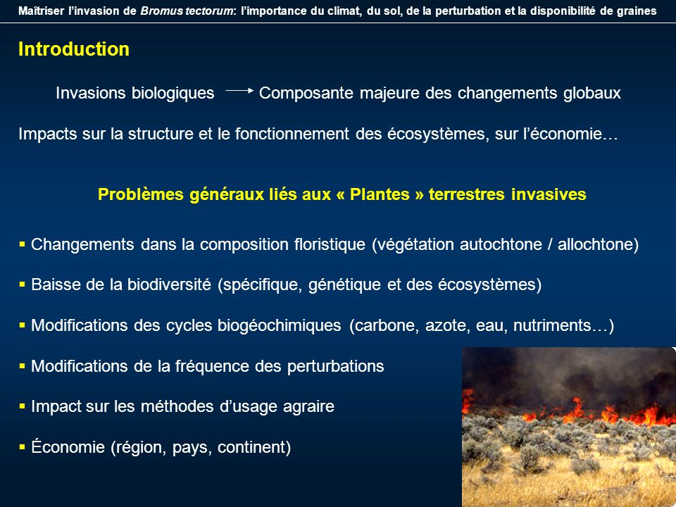Maîtriser linvasion de Bromus tectorum: limportance du climat, du sol, de la perturbation et la disponibilité de graines Introduction Invasions biolog