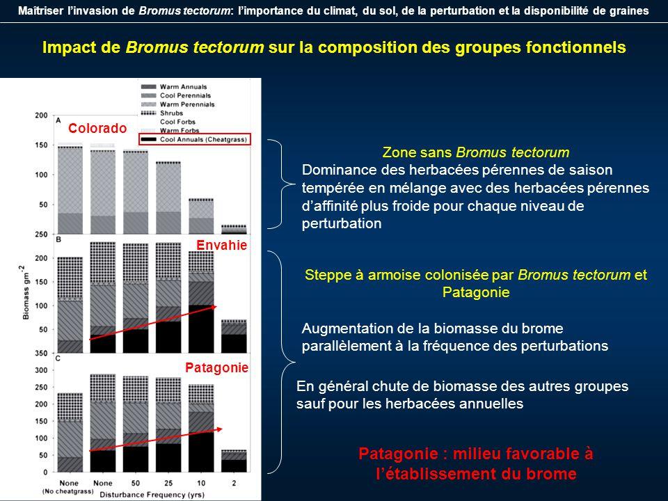 Maîtriser linvasion de Bromus tectorum: limportance du climat, du sol, de la perturbation et la disponibilité de graines Effet de la perturbation et de la disponibilité de graines sur linvasion de Bromus tectorum Sur 500 ans simulés, aucun scénarios sur la steppe du Colorado na prédit une biomasse de Bromus tectorum > 40g/m² (probabilité détablissement très faible) Lien biomasse/régime des perturbations La biomasse la plus importante atteinte par Bromus tectorum correspond au niveau de fréquence des perturbations tous les 10 ans (environ 100 et 130 g/m²) La biomasse la plus faible pour une fréquence de 2 ans (entre 33 et 40g/m²) Risque élevé dinvasion pour la steppe à armoise et en Patagonie Variations de biomasse perturbations (fréquence), la disponibilité de graines a un rôle secondaire (mais nécessaire pour atteindre la valeur seuil 40g/m²)