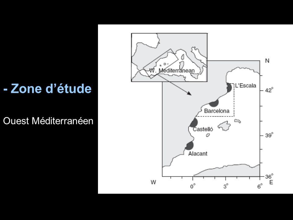 - Zone détude Ouest Méditerranéen
