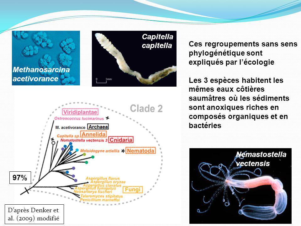 MECANISMES POSSIBLES DE TRANSFERT Daprès Andersson (2005) Hypothèses proposées: - Transfert entre procaryotes facile via un plasmide - « You are what you eat » (C) - Hôte-parasite - Virus - Transfert entre un hôte et son endosymbionte aussi (A-B)