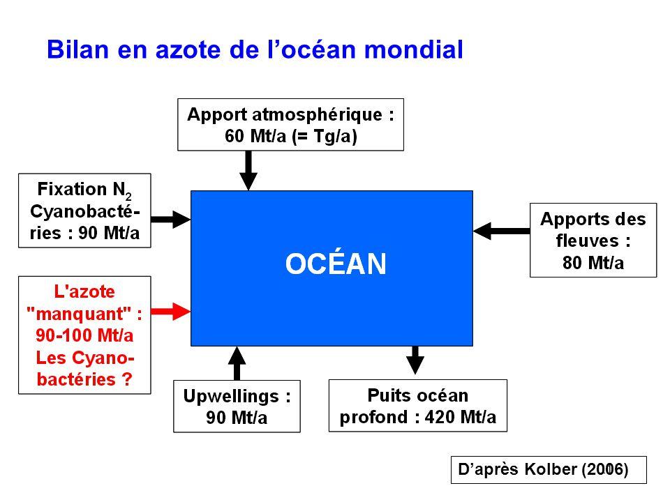 11 Bilan en azote de locéan mondial Daprès Kolber (2006)