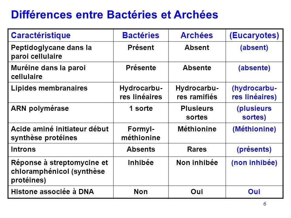 6 Différences entre Bactéries et Archées CaractéristiqueBactériesArchées(Eucaryotes) Peptidoglycane dans la paroi cellulaire PrésentAbsent(absent) Muréine dans la paroi cellulaire PrésenteAbsente(absente) Lipides membranairesHydrocarbu- res linéaires Hydrocarbu- res ramifiés (hydrocarbu- res linéaires) ARN polymérase1 sortePlusieurs sortes (plusieurs sortes) Acide aminé initiateur début synthèse protéines Formyl- méthionine Méthionine(Méthionine) IntronsAbsentsRares(présents) Réponse à streptomycine et chloramphénicol (synthèse protéines) InhibéeNon inhibée(non inhibée) Histone associée à DNANonOui