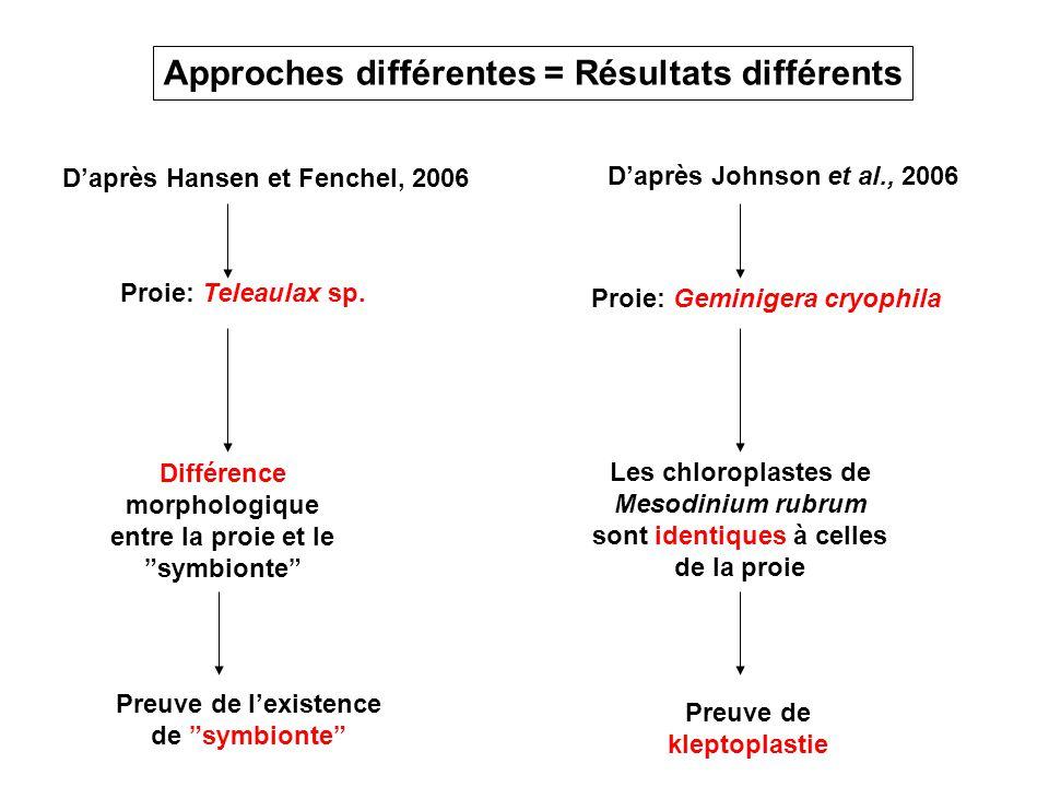 Daprès Hansen et Fenchel, 2006 Proie: Teleaulax sp. Différence morphologique entre la proie et le symbionte Daprès Johnson et al., 2006 Proie: Geminig