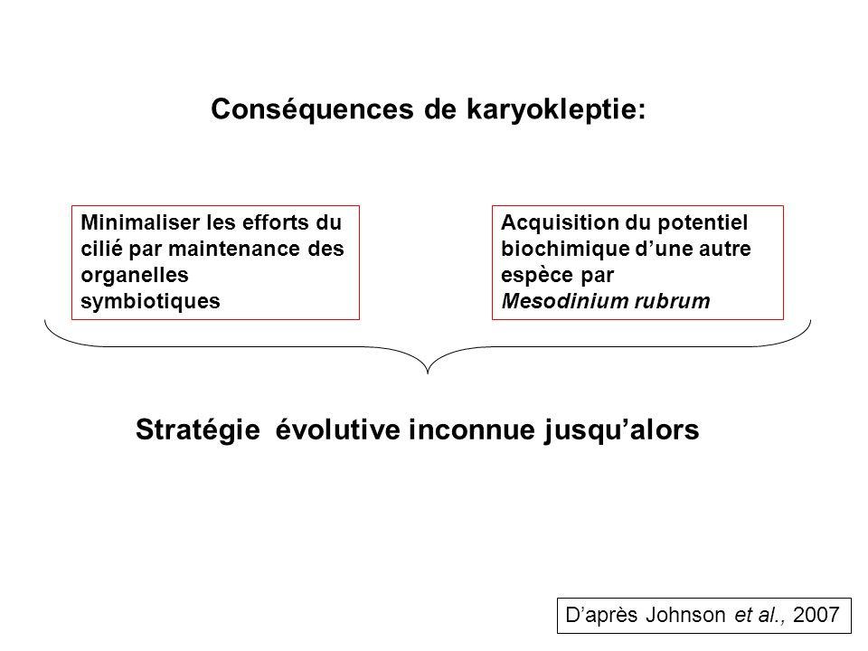 Minimaliser les efforts du cilié par maintenance des organelles symbiotiques Acquisition du potentiel biochimique dune autre espèce par Mesodinium rubrum Conséquences de karyokleptie: Stratégie évolutive inconnue jusqualors Daprès Johnson et al., 2007