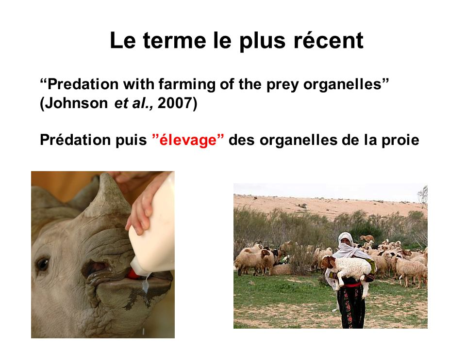 Predation with farming of the prey organelles (Johnson et al., 2007) Prédation puis élevage des organelles de la proie Le terme le plus récent