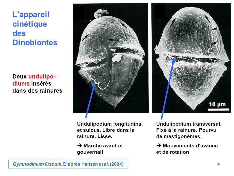 f.Cyste de résistance g. Germination du cyste de résistance h.