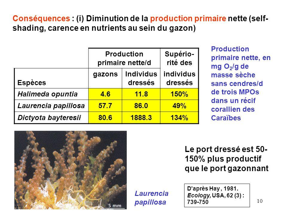 10 Conséquences : (i) Diminution de la production primaire nette (self- shading, carence en nutrients au sein du gazon) Production primaire nette/d Supério- rité des Espèces gazonsIndividus dressés individus dressés Halimeda opuntia4.611.8150% Laurencia papillosa57.786.049% Dictyota bayteresii80.61888.3134% Production primaire nette, en mg O 2 /g de masse sèche sans cendres/d de trois MPOs dans un récif corallien des Caraïbes D après Hay, 1981.