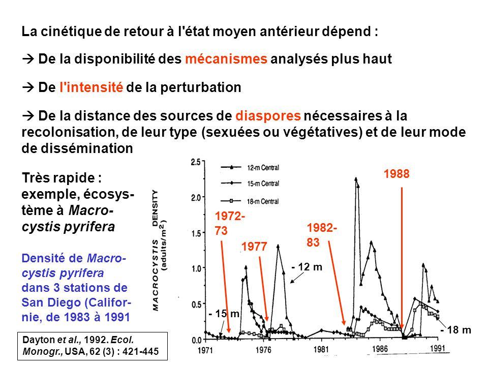 104 La cinétique de retour à l état moyen antérieur dépend : De la disponibilité des mécanismes analysés plus haut De l intensité de la perturbation De la distance des sources de diaspores nécessaires à la recolonisation, de leur type (sexuées ou végétatives) et de leur mode de dissémination Très rapide : exemple, écosys- tème à Macro- cystis pyrifera - 12 m - 15 m - 18 m Densité de Macro- cystis pyrifera dans 3 stations de San Diego (Califor- nie, de 1983 à 1991 1988 1972- 73 1977 1982- 83 Dayton et al., 1992.